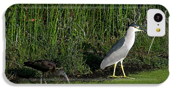 Heron And Ibis IPhone 5c Case by Mark Newman