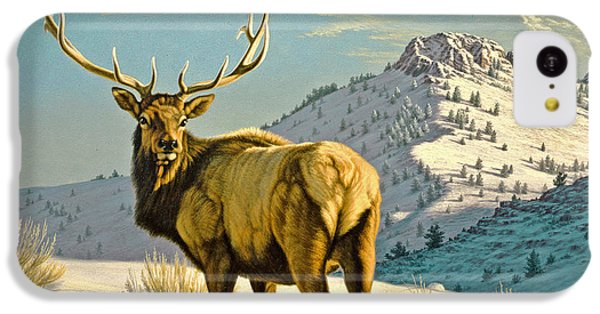 Bull iPhone 5c Case - High Country Bull by Paul Krapf