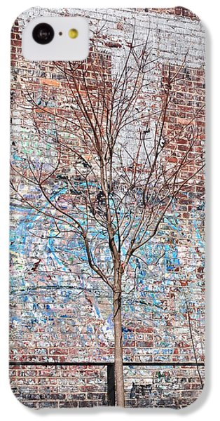 High Line Palimpsest IPhone 5c Case