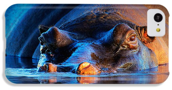 Hippopotamus  At Sunset IPhone 5c Case by Johan Swanepoel