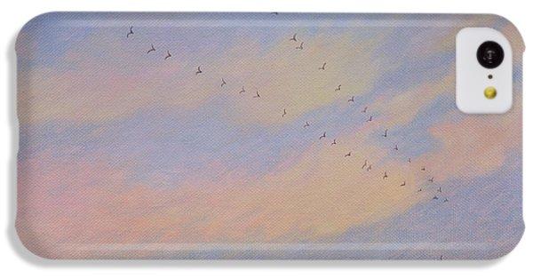Homeward, 2004 Oil On Canvas IPhone 5c Case by Ann Brain