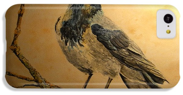 Hooded Crow IPhone 5c Case by Juan  Bosco