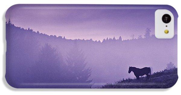 Horse iPhone 5c Case - Horse In The Mist by Yuri Santin