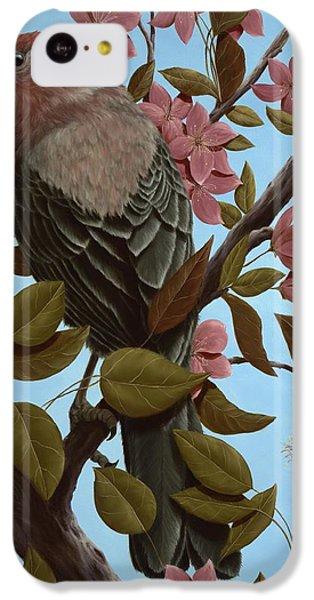 House Finch IPhone 5c Case by Rick Bainbridge
