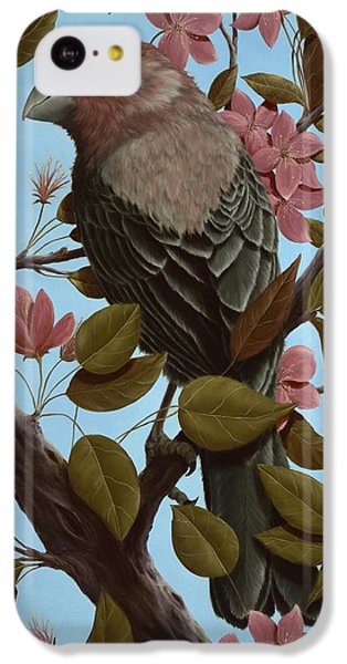 House Finch IPhone 5c Case by Rick Bainbridge
