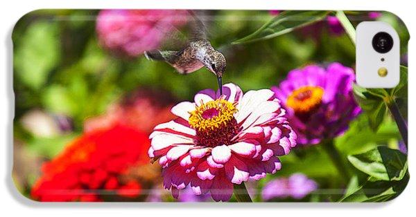 Hummingbird Flight IPhone 5c Case by Garry Gay