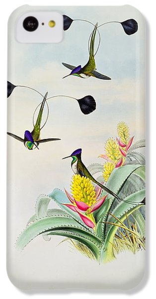 Humming Bird iPhone 5c Case - Hummingbird by John Gould