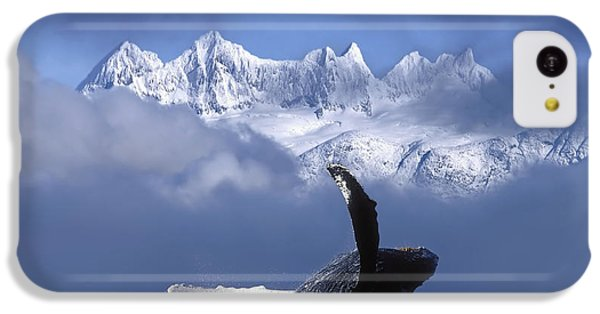 Humpback Whale Breaches In Clearing Fog IPhone 5c Case by John Hyde