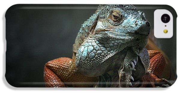Dragon iPhone 5c Case - I Am The King ,.. Who Else ! by Holger Droste