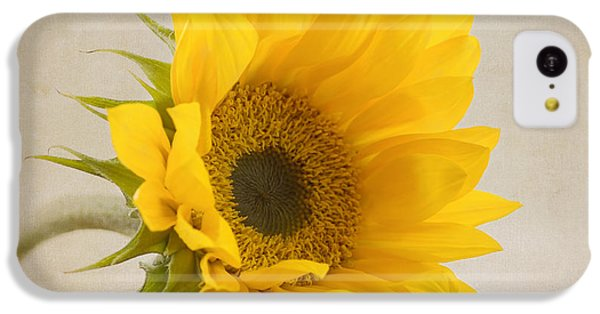 Sunflower iPhone 5c Case - I See Sunshine by Kim Hojnacki