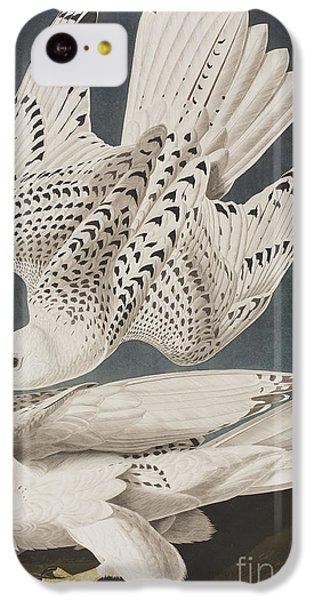 Illustration From Birds Of America IPhone 5c Case by John James Audubon