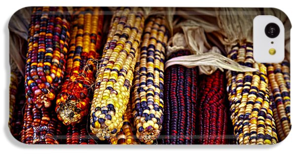 Vegetables iPhone 5c Case - Indian Corn by Elena Elisseeva