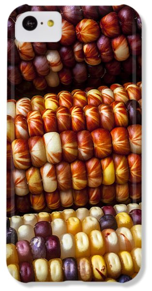 Vegetables iPhone 5c Case - Indian Corn Harvest Time by Garry Gay