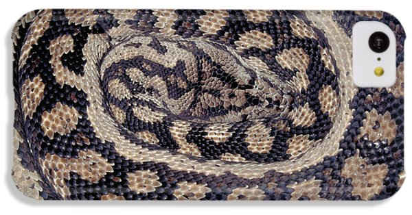 Inland Carpet Python  IPhone 5c Case
