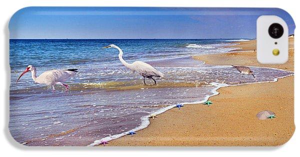 Inspiring Ibis Egret Sandpiper Starfish Sand Dollars  IPhone 5c Case