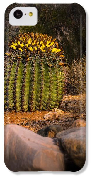 IPhone 5c Case featuring the photograph Into The Prickly Barrel by Mark Myhaver