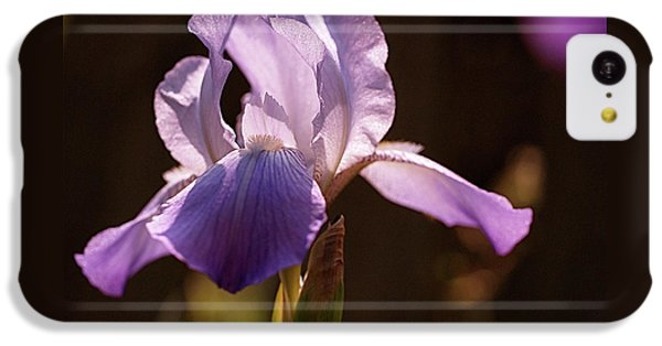 Iris Aglow IPhone 5c Case by Rona Black