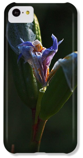 Iris Emerging  IPhone 5c Case