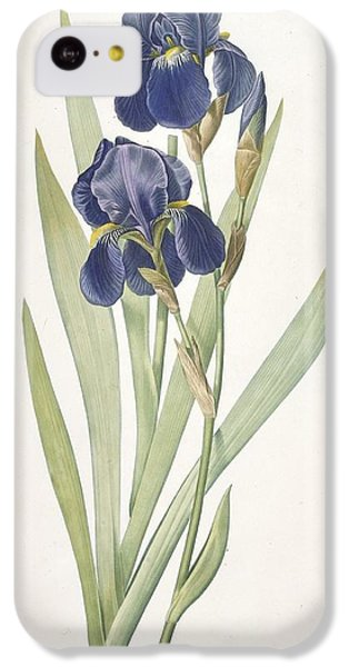 Iris Germanica Bearded Iris IPhone 5c Case by Pierre Joseph Redoute