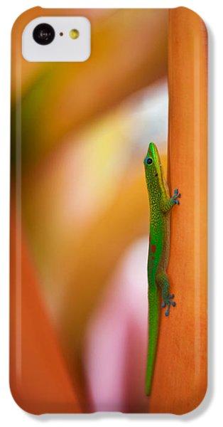 Salamanders iPhone 5c Case - Island Friend by Mike Reid