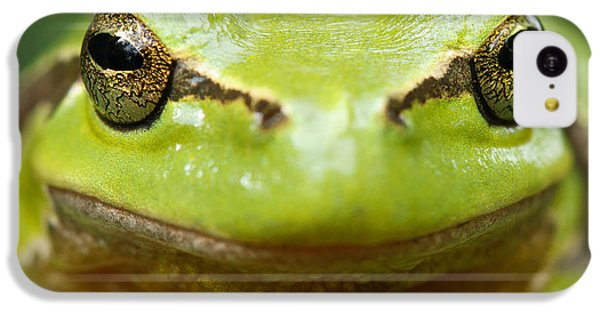 It's Not Easy Being Green _ Tree Frog Portrait IPhone 5c Case by Roeselien Raimond