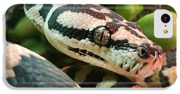 Python iPhone 5c Case - Jungle Python by Kelly Jade King