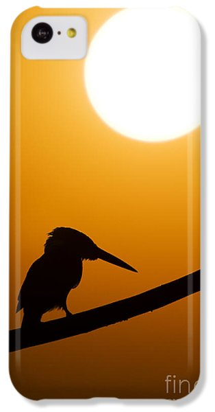Kingfisher Sunset Silhouette IPhone 5c Case