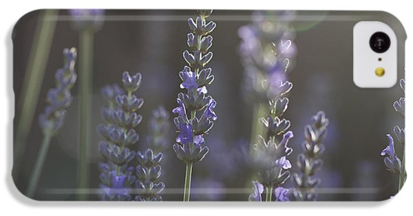 Lavender Flare. IPhone 5c Case by Clare Bambers