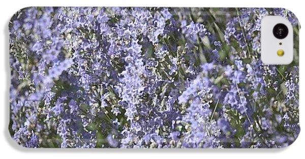 Beautiful iPhone 5c Case - #lavender by Georgia Fowler