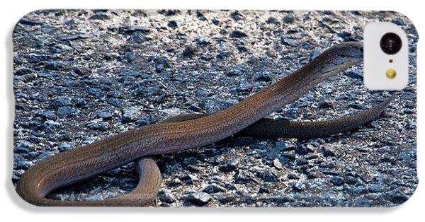 IPhone 5c Case featuring the photograph Legless Lizard Or A Snake ? by Miroslava Jurcik
