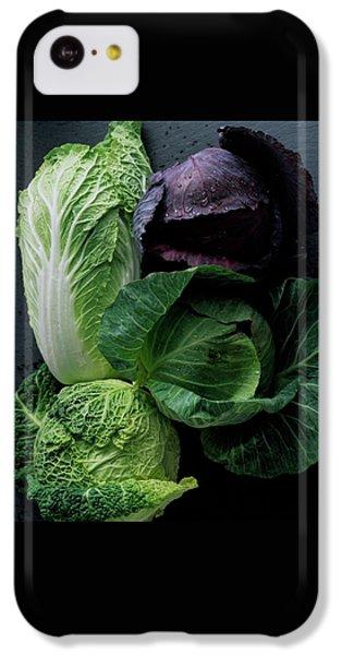 Lettuce IPhone 5c Case by Romulo Yanes