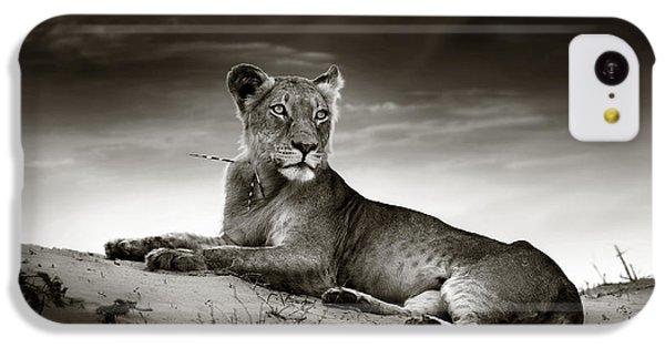 Lioness On Desert Dune IPhone 5c Case