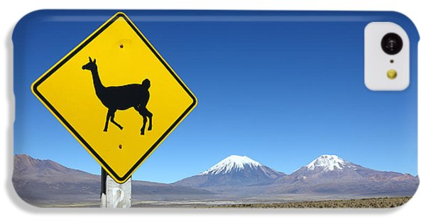 Llamas Crossing Sign IPhone 5c Case by James Brunker