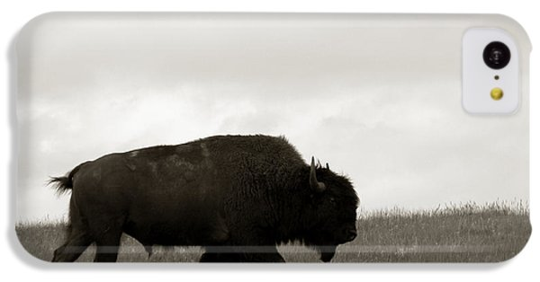 Lone Bison IPhone 5c Case by Olivier Le Queinec