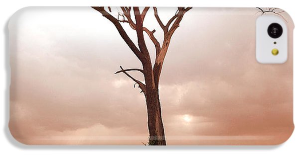 IPhone 5c Case featuring the photograph Lonely Tree by Ricky L Jones