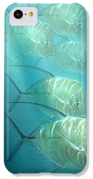 Lookdowns IPhone 5c Case by Aaron Blaise