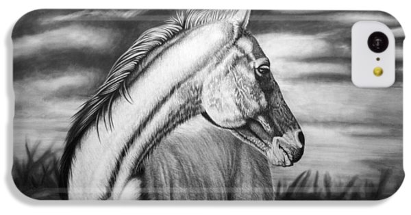Horse iPhone 5c Case - Looking Back by Glen Powell