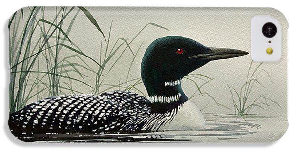 Loon Near The Shore IPhone 5c Case by James Williamson
