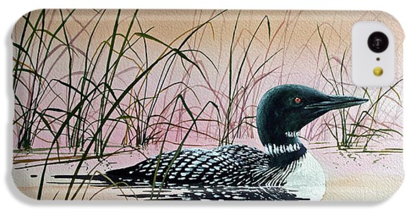 Loon Sunset IPhone 5c Case