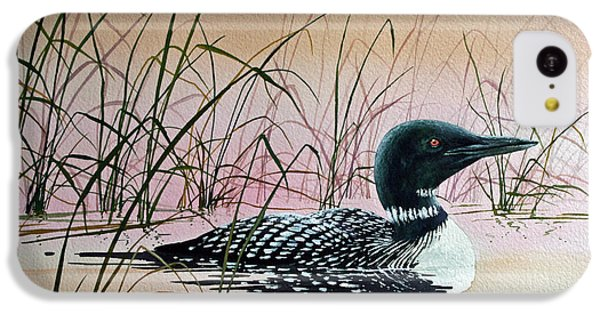Loon Sunset IPhone 5c Case by James Williamson