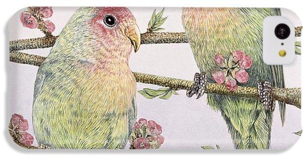 Parakeet iPhone 5c Case - Love Birds by Pat Scott