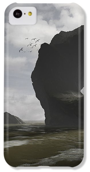 Low Tide IPhone 5c Case