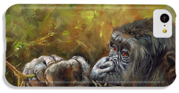 Lowland Gorilla 2 IPhone 5c Case by David Stribbling