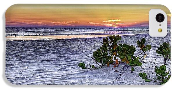 Beach Sunset iPhone 5c Case - Mangrove On The Beach by Marvin Spates