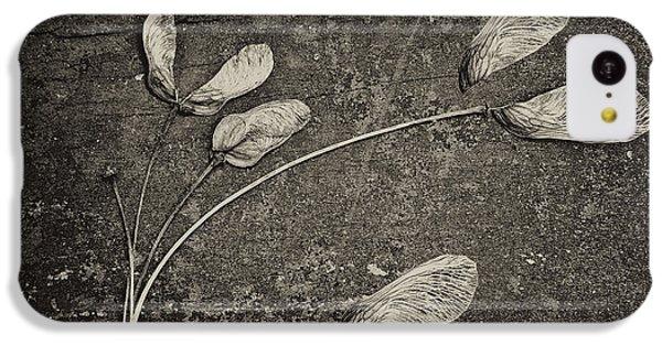 Maple Tree Whirlybirds IPhone 5c Case by Tom Mc Nemar
