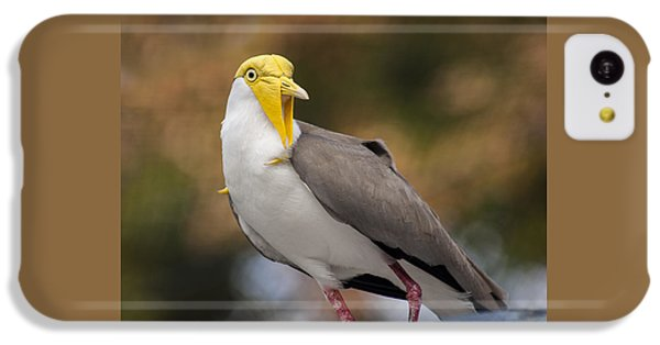 Masked Lapwing IPhone 5c Case