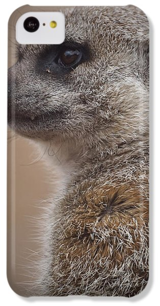 Meerkat 9 IPhone 5c Case
