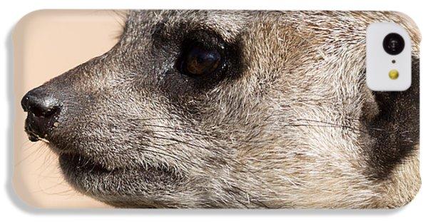 Meerkat Mug Shot IPhone 5c Case by Ernie Echols