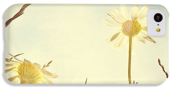 Sky iPhone 5c Case - #mgmarts #daisy #all_shots #dreamy by Marianna Mills