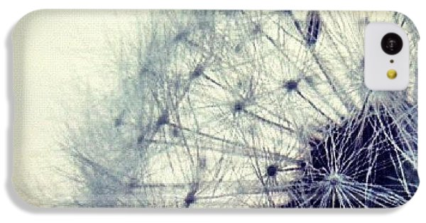 Sky iPhone 5c Case - #mgmarts #dandelion #love #micro by Marianna Mills